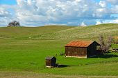 Barn And Shed On A Grassy Knoll In California, Usa