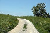 Gravel Road Through A Meadow Under A Clear Blue Sky At Perryville Battlefield State Historic Site, C poster