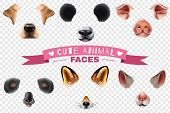 Colored And Isolated Cute Animal Faces Transparent Icon Set With Different Elements Of The Animal S  poster