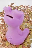 Piggybank Sitting On Money