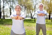 Physical Exercise. Pleasant Nice Woman Holding Her Hands In Front Of Her While Doing Exercises poster