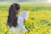 Culture Reading In Nature; Read Culture And Peace poster