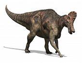 Corythosaurus Dinosaur