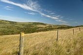 Coastal Footpath Above Farmland Near Tyneham In Dorset On The South Coast poster
