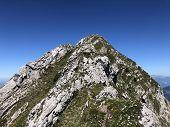 Alpine Mountain Peak Brunnelistock Or Bruennelistock Above The Alpine Lake Wagitalersee (waegitalers poster