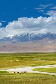 Idyllic Landscape In The Pamirs Plateau With Fresh Green Meadows On Pasture And Winding Rivers And S poster