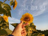 Inspirational Motivational Quote - Love Your Self. With Korean Pop Music K-pop Love Sign Hand Gestur poster
