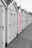 Colorsplash Of A Row Of Beach Huts At Lyme Regis In Dorset. poster