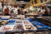 Seafood Market, Tokyo