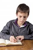picture of 13 year old  - 13 years old boy doing his homework  - JPG