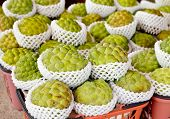 Freshly harvested Custard or Sugar apples at a market in Taiwan