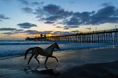 Freedom Stallion - horse running on a beach near a wooden pier
