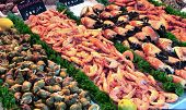 Showcase Of Seafood