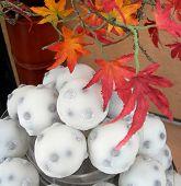 Dulces japoneses con hojas rojas