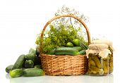 fresh cucumbers, pickles and dill in basket isolated on white