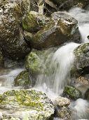 Agua de manantial que fluye