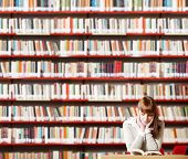 Young Student In A Library