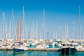 Masts Of Yachts At The Marina Sea