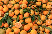picture of clementine-orange  - fruit from italy: sicilian clementine a variety of mandarin orange in the Italian market
