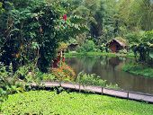 Little Houses For Holiday In Front Of A Lake In Mindo, Ecuador Rainforest