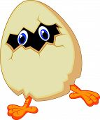 Little chicken cartoon in egg