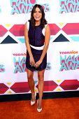 LOS ANGELES - NOV 17:  Nikki Reed at the TeenNick Halo Awards at Hollywood Palladium on November 17, 2013 in Los Angeles, CA