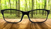 stock photo of distort  - Clear forest in glasses on the background of blurred forest - JPG