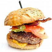 pic of cheese-steak  - Cheese burger  - JPG