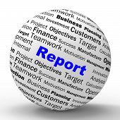 Report Sphere Definition Shows Progress Statistics And Financial