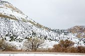 Nevada USA spring first snow in the mountains