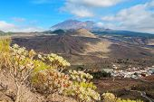 Landscape Of Tenerife. Spain