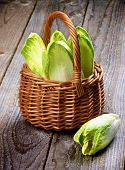 image of endive  - Fresh Crunchy Endive Leaves in Wicker Basket closeup on Rustic Wooden background - JPG