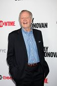 LOS ANGELES - APR 28:  Jon Voight at the