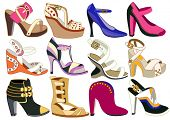 collection of fashionable women's shoes (vector illustration)