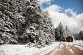 winter in the Bolu mountains, Turkey