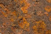 Orange Rust Grunge Abstract Background