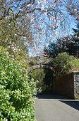 Dunfermline Park