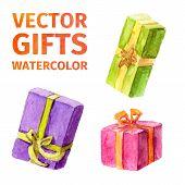 Vector Gifts. Watercolor.