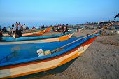 Fishing boats, Chennai, India