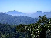 Beautiful Landscape Of The Fortress Sigiriya In Sri Lanka