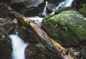Yakushima Waterfall