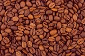 Brown coffee background, abstract texture