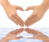 Heart made of hands and water isolated on white background