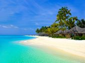 image of kuramathi  - Beach bungalows on a tropical island - JPG