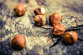 stock photo of hazelnut  - Hazelnuts on Aged Wood Table. Hazelnuts Closeup.
