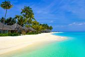 stock photo of kuramathi  - Beach bungalows on a tropical island - JPG