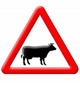 Cow Crossing Traffic Sign