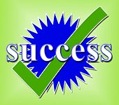 Success Tick Means Succeed Checked And Triumph