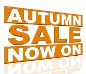Autumn Sale Represents At The Moment And Cheap