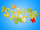 Spring Flowers Shows Flora Warmth And Bloom